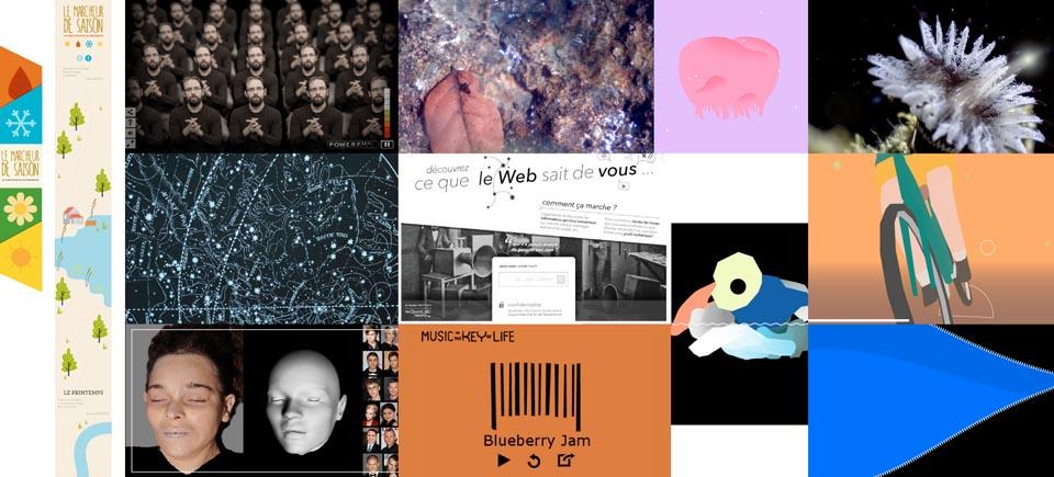 L'ONF et ARTE dévoilent les 12 gagnants du projet Haïkus interactifs