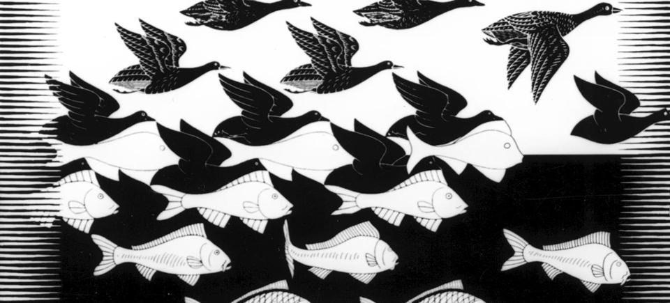 M.C. Escher,  le mathémagicien