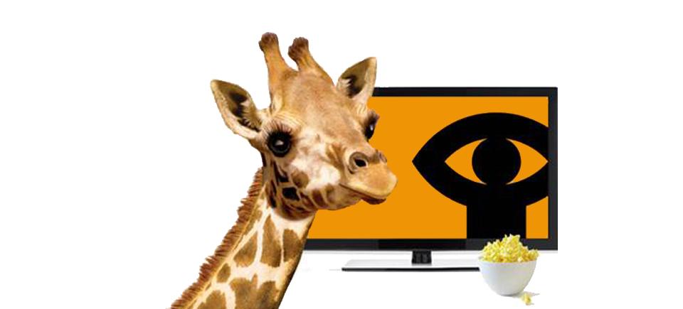 1100 films de l'ONF maintenant disponibles sur Télé OPTIK de TELUS