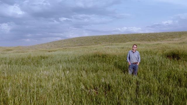 Au beau milieu de la plaine