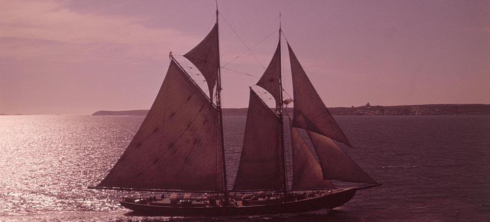 Navires, voiliers et autres « voitures d'eau » : 8 films pour les amoureux de bateaux