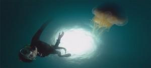 UNE-Tournage l'école des océans ONF méduse