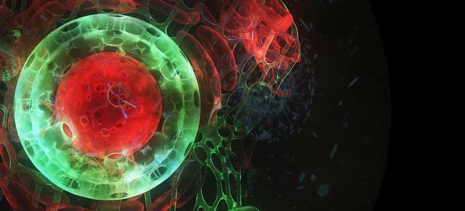 Kyma de Philippe Baylaucq : Explorer les ondes en 360
