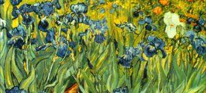 Le printemps à l'ONF : Vive les fleurs!