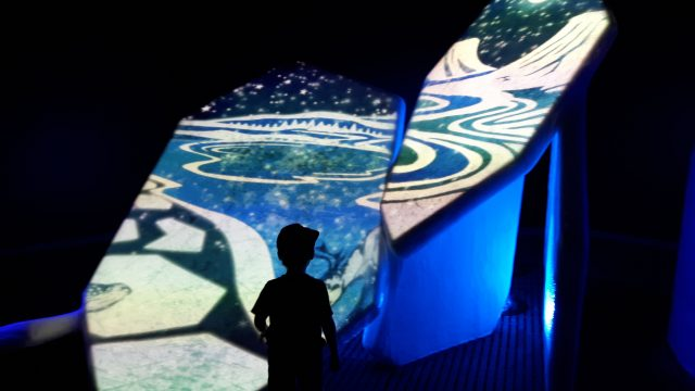 Au-delà des glaces | Touchez à un vrai glacier arctique au Musée canadien de la nature