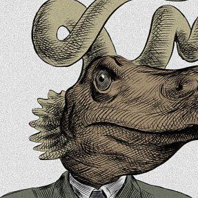 L'évolution des espèces : du big bang à aujourd'hui