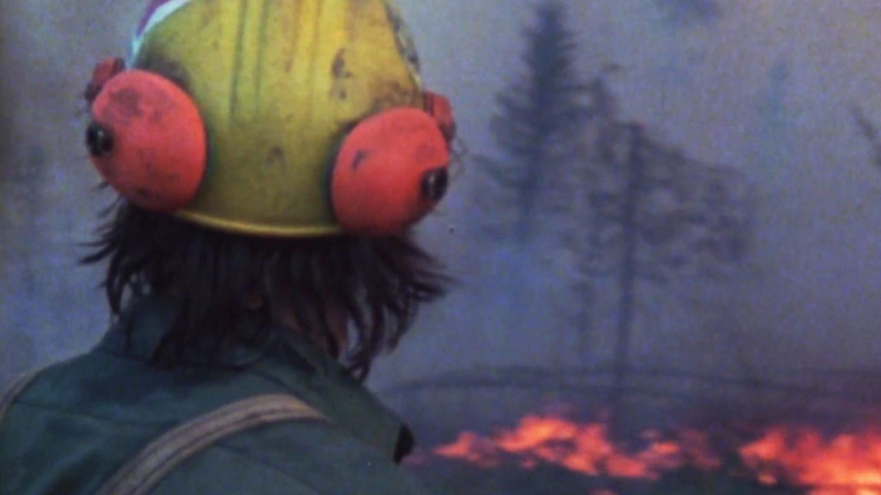 Dans le ventre d'un feu de forêt